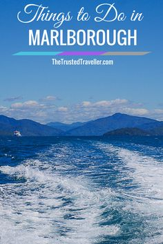 Cruising Marlborough Sounds - Things to Do in Marlborough, New Zealand - The Trusted Traveller
