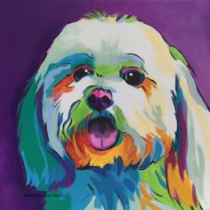 Coton de tulear Bichon Frise Havanese Small White Dog Custom Pop Art Pet Portrait of a Happy Smiling Coton De Tulear, Dog Pop Art, Dog Art, Frise Art, Dog Portraits, Animal Paintings, Oeuvre D'art, Canvas Art Prints, Bam Bam
