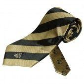 Central Florida Repp Stripe Tie