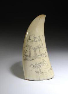 A carved Sperm whale tooth (scrimshaw).  Being offered at auction on 20 May 2014, lot 116