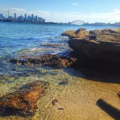 Shark Island, Sydney Harbour   18 Magical Places You Won't Believe Are Actually In Sydney