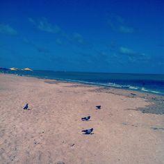 A beautiful sight of the Ponta Verde Beach in Maceió, Brazil!