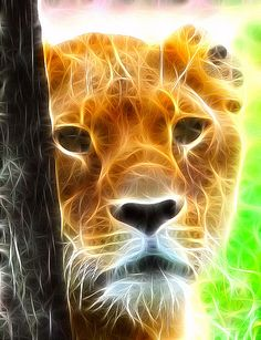 Fractal Lioness.