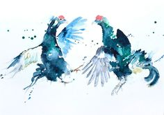 JEN BUCKLEY signed LIMITED EDITON PRINT of my original Black GROUSE