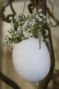 Eggshell Planters...cute for an Easter tree but color the eggs