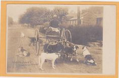 Black American Real Photo Postcard- Uncle John's Dog Drawn Carriage Nashville TN