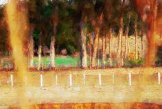 Woodland Elizabeth Barros Pinturas