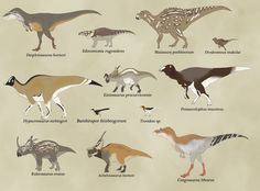 Here are the main dinosaurs of Two Medicine formation (Montana) during the upper Campanian (upper Cretaceous).