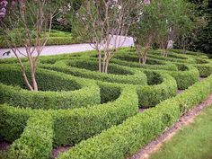 BirrCastle Parterre - Parterre - Wikipedia, the free encyclopedia
