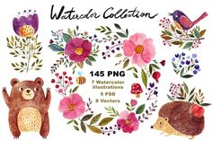 Forest watercolor clip art collection
