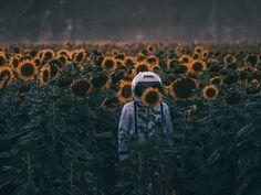 Risultati immagini per sunflower astronaut Amazing Photography, Art Photography, Maternity Photography, Wow Art, Photo Displays, Trippy, Art Inspo, Aesthetic Wallpapers, Backdrops
