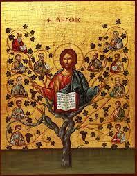 "Christ Tree - Orthodox icon of Jesus Christ Pantocrator, ""The Vine"" Christ Pantocrator, Religious Icons, Religious Art, La Salette, True Vine, Les Religions, Vides, Byzantine Icons, The Good Shepherd"