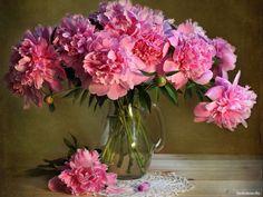 обои Пионов розовый букет фото