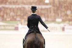 Salute, an important part of every dressage test from the easiest ones to the Olympic level.