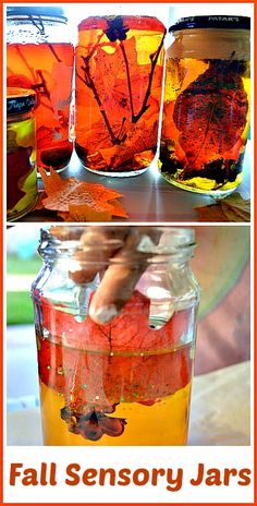 Easy to make fall themed sensory jars. Great for kids all ages! Science investigation