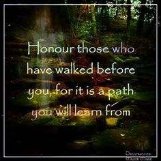 Native American Ancestry, Native American Wisdom, Native American History, Native American Indians, Native Americans, Animal Spirit Guides, Spirit Animal, Positive Thoughts, Christian Quotes