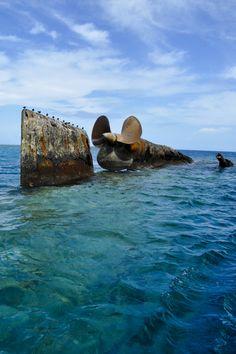 prinz eugen, kwajalein atoll, marshall islands - Bing Images Prinz Eugen, Painting & Drawing, Drawing Tips, Marshall Islands, Shipwreck, Battleship, Titanic, Abandoned, Bing Images