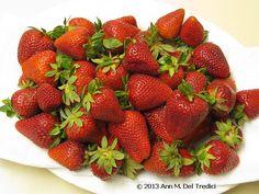 Strawberries: Perfect, ripe organic strawberries in early April! Photo © 2013 Ann M. Del Tredici