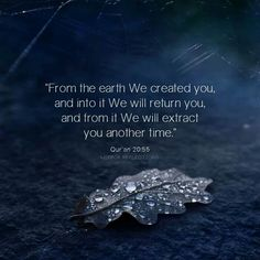 Qur'an TaHa 20:55: From the earth uWe created you, and into it We will return you, and from it We will extract you another time.