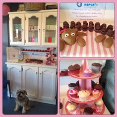 Sian and Willoughby Veterinary Hospital raised $425 for Cupcake Day http://www.rspcacupcakeday.com.au/