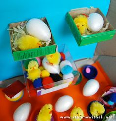 This idea makes me smile - particularly because we are hatching chicks.