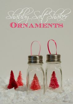 Salt Shaker Ornaments | Mason Jar Crafts Love