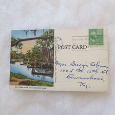 Vintage Postcard Suwannee River Pinellas Park Florida