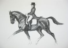 equestrian charcoal drawing - Google Search