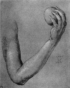 Arm of Eve - Albrecht Durer
