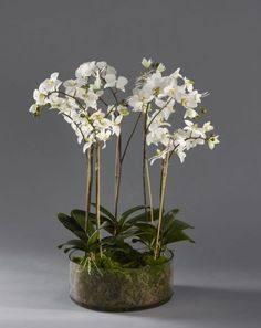 White Orchids in Large Glass Vase Artificial Orchids, Artificial Flower Arrangements, Large Glass Vase, White Orchids, Luxury, Plants, Handmade, Beautiful, Home Decor