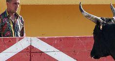La Manade | Manade des Baumelles | Camargue | Saintes Maries de la Mer