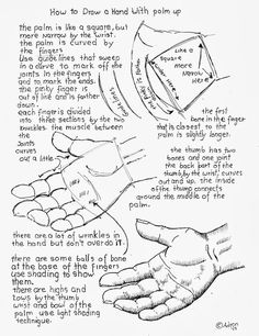 How to Draw Worksheets for The Young Artist: How To Draw A Hand Held Out With Palm Up.