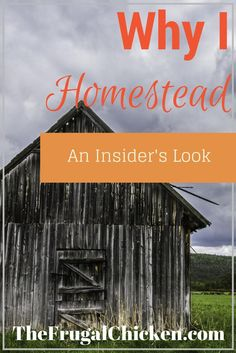 Ever wonder why someone chooses to homestead? Here's an insider look! From FrugalChicken: