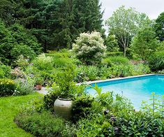 Edge a Pool..hard edges around the pool are softened by using perennials and landscape shrubs that won't shed debris