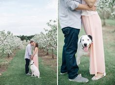 Engagement photos at BLOSSOM TIME! #AamodtsWeddings