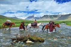 Crossing the river on horses | Nomads/Wonderers on the move to finding a new home. Deosai Plains, Northern Pakistan.