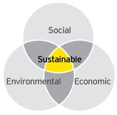 Triple Bottom Line is a company's ability to report gains on efforts resulting in dollar value, impact on communities, and sustainable environmental practices.