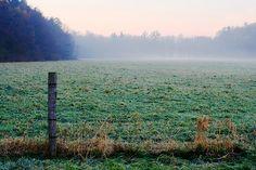 misty frosty morning by SuperDewa, via Flickr