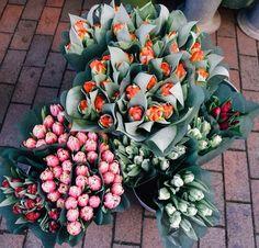 Pretty florals!