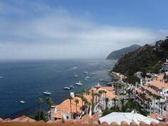 Catalina Island 2011