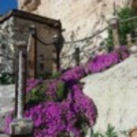 İncecik Krep Tarifi Ve Püf Noktaları - Nefis Yemek Tarifleri Omlet, Plants, Pizza, Plant, Planets