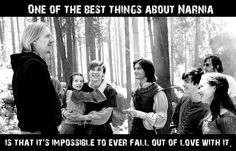 So true. Narnia was my childhood, and I still love it to this day.