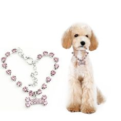 Brilliant Crystal Poodle's Bone Collar