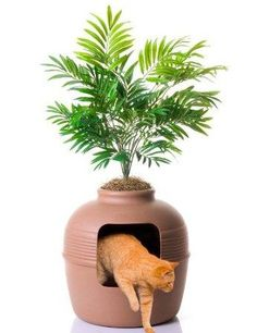 Wow, every cat owner needs this. I'm adding it to my wish list. A litter box that looks like a pot and has a plant growing out of the top.