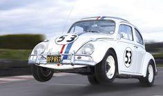 Herbie ♥♥♥♥