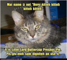 Gots it? It's Lord Buttercups to youse....