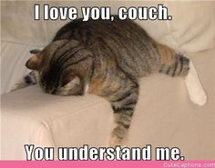 I Love You, Couch.