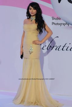 Ayyan ali at veet celebration