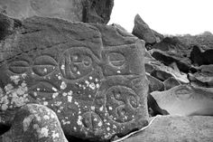 Petroglyphs, Wedding Rocks, Cape Alava by Rick Landry