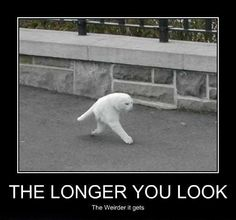 The longer you look..